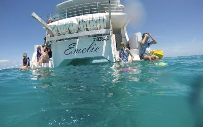 Family fun on the Southern Great Barrier Reef