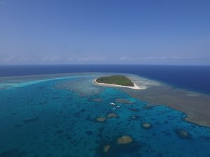 Drone view of Lady Musgrave Island with 1770reef – copyright