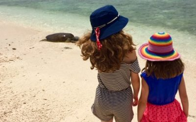 Lady Musgrave Island Family Friendly