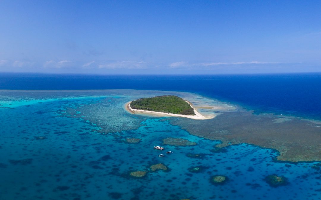 Have you wondered how Lady Musgrave Island was created