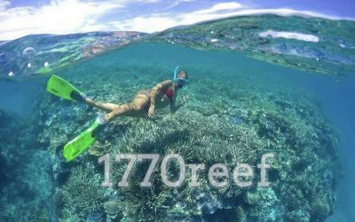 Go Pro Winner Pic from one of our Passengers